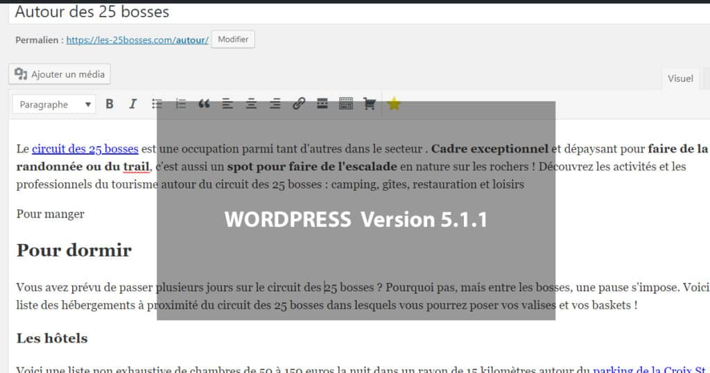 ancien wordpress