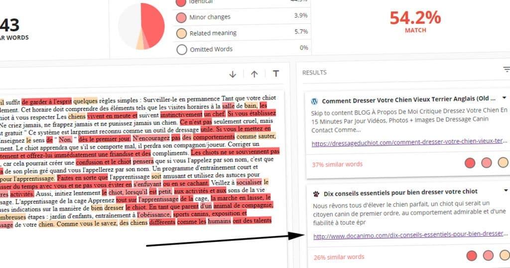 resultat copyleaks